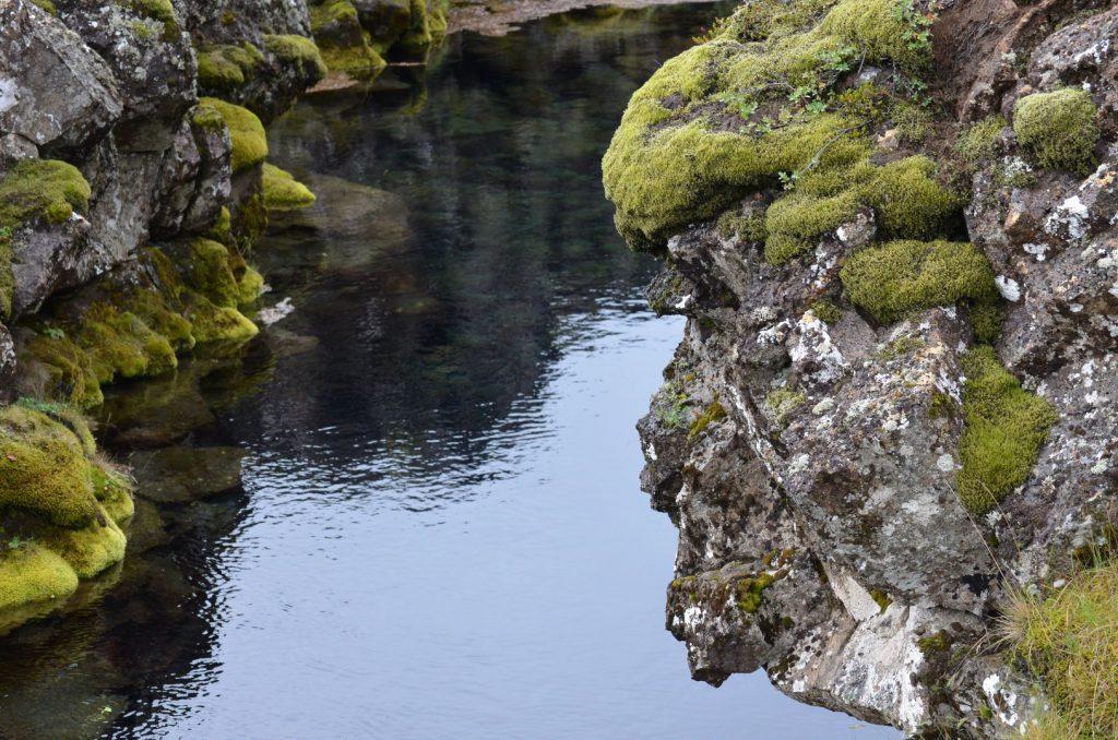 Island Thingvellir Silfra Troll