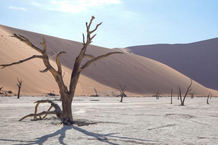 Dead Vlei in Namibia