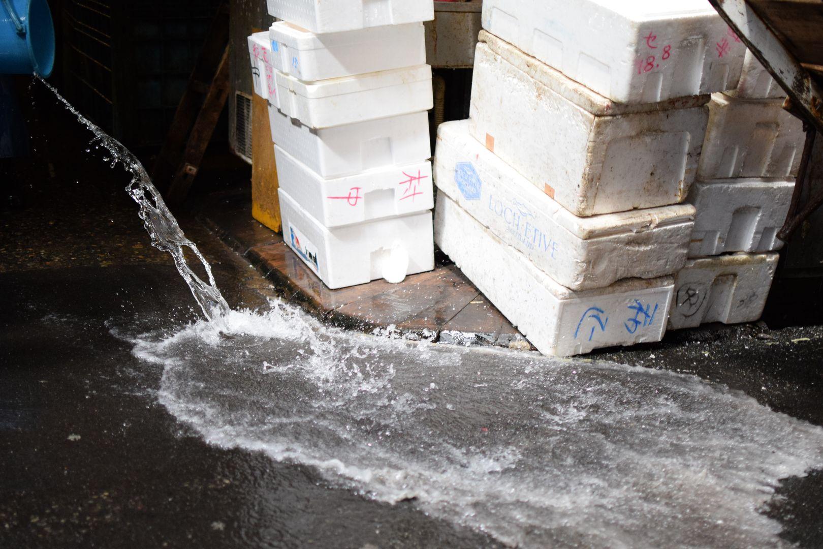 Tsukiji Markt, Tokyo