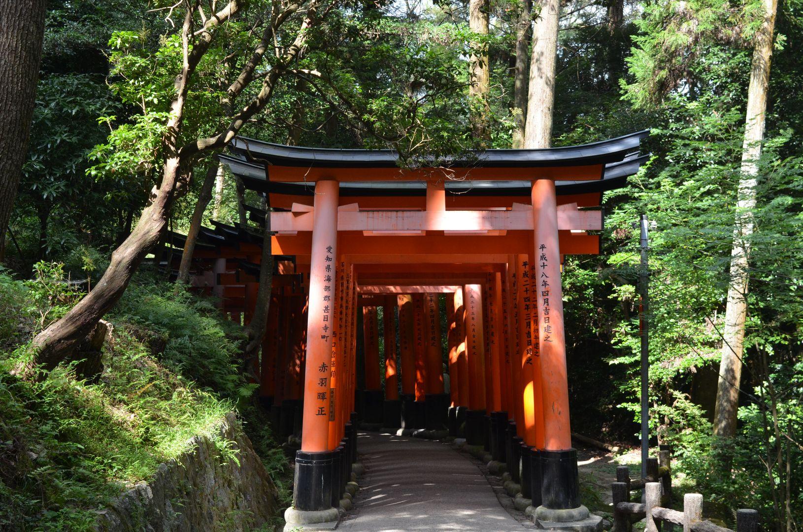 rote Torii Fushimi Inari Taisha, Kyoto