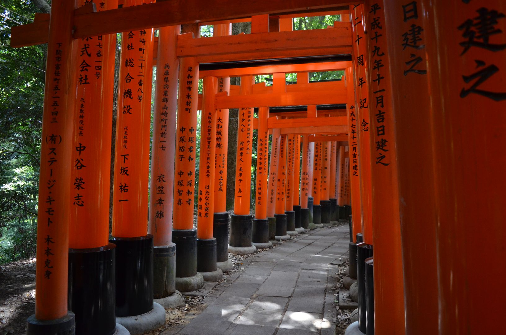 Torii Fushimi Inari Taisha, Kyoto