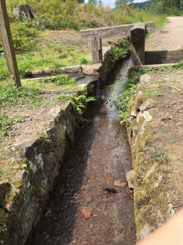 Wassersystem der Oberharzer Wasserwirtschaft