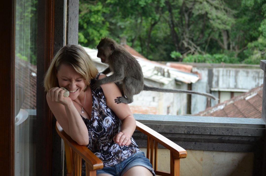 Bali Affen im Hotel