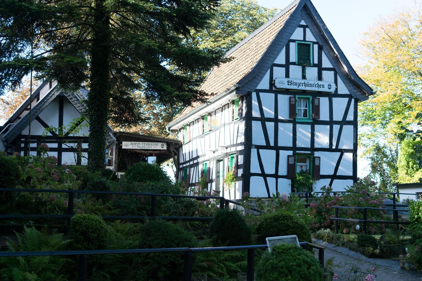 Königswinter, Drachenfels