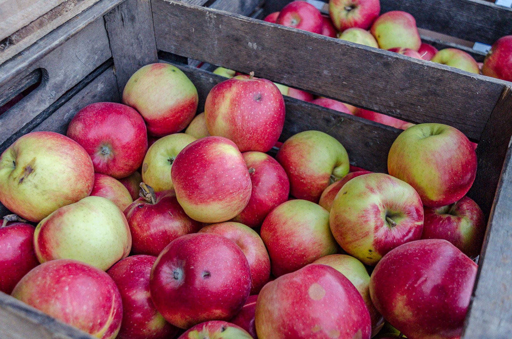 Apfelkiste-Altes-Land