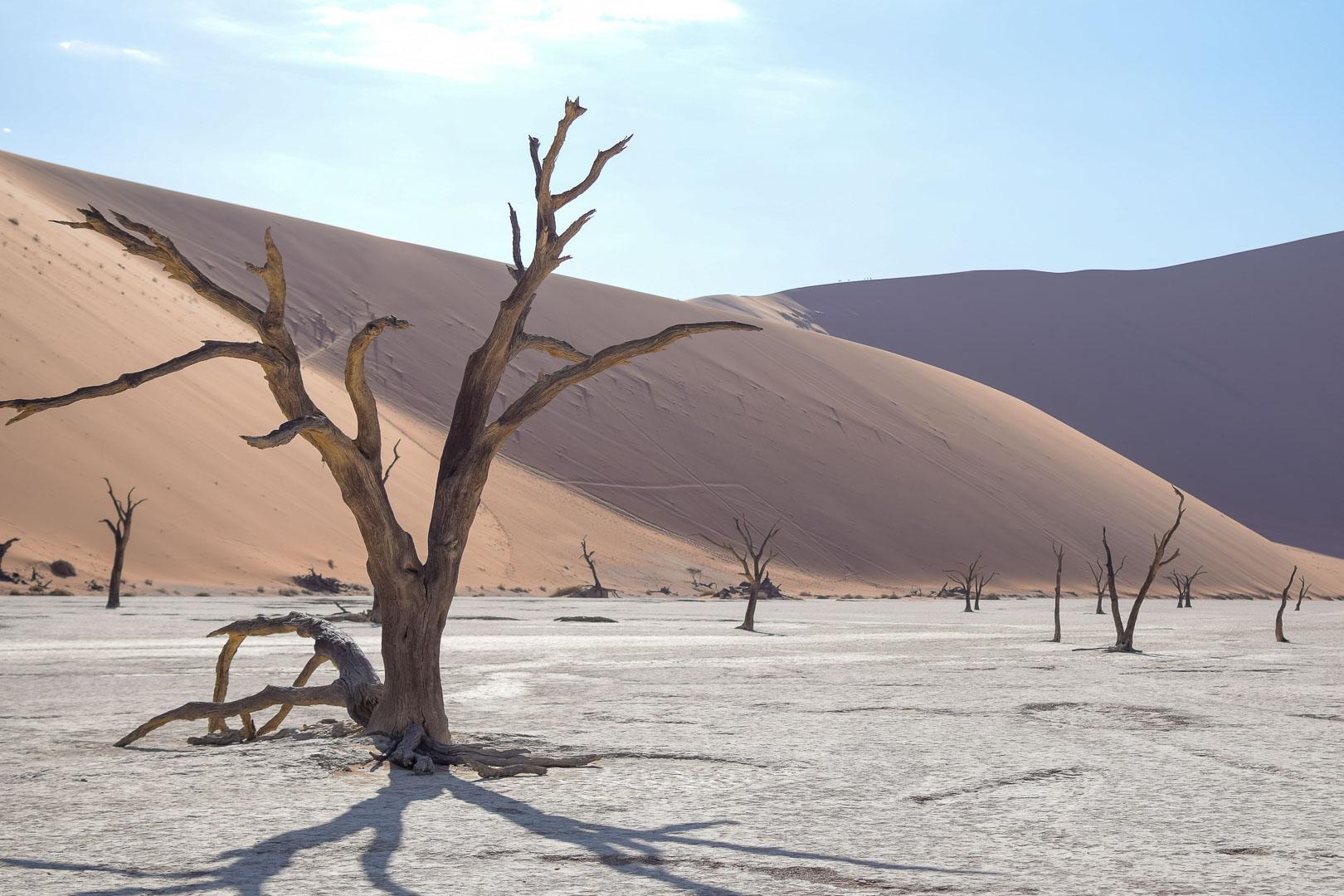 Namib-Wueste-Namibia