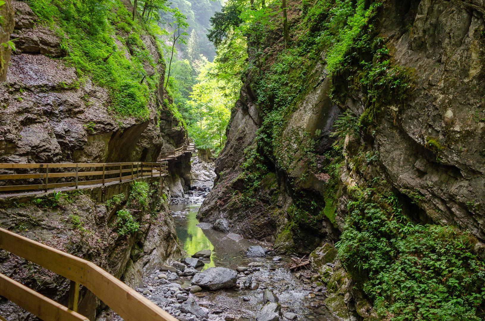Weg-auf-Holzstegen-durch-die-Alplochschlucht